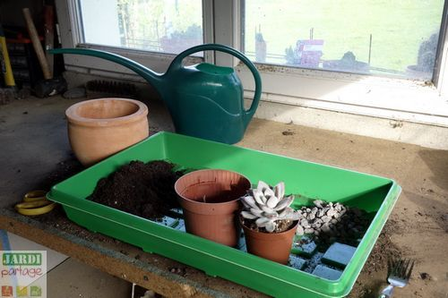 17 meilleures id es propos de jardin de plantes grasses sur pinterest plantes grasses. Black Bedroom Furniture Sets. Home Design Ideas