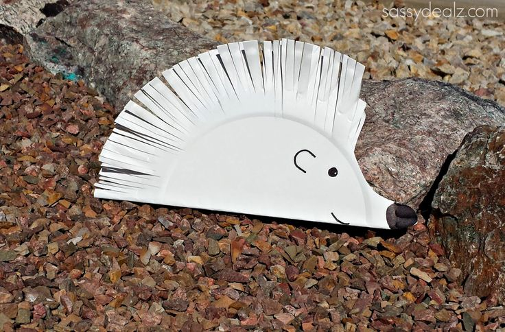 Here's a fun paper plate art project for the kiddos! Make an adorable hedgehog to play with :)