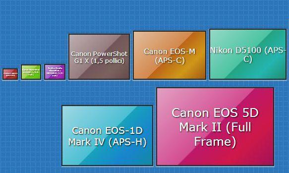 Foto a Fuoco: Sensori Fotografici, Fattore Crop e Megapixel  Photographic sensors,Crop and Megapixel Guide