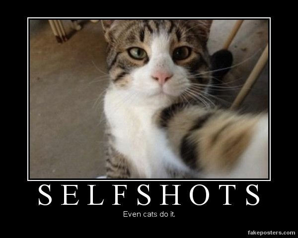 Selfshots - Demotivational Poster