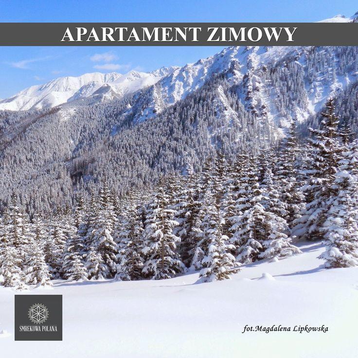 Apartament Zimowy - zapraszamy! #poland #polska #malopolska #zakopane #mountain #tatry #place #winter #zima #destination