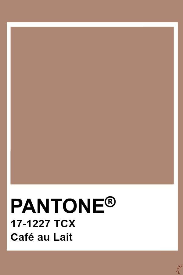 Pantone Café Au Lait Art Pinterest Color And Inspiration