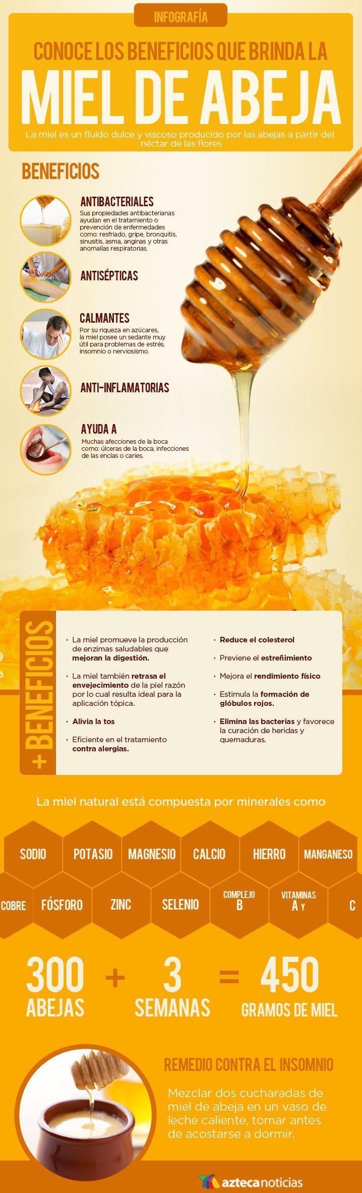 Conoce los beneficios que brinda la miel de abeja #infografia