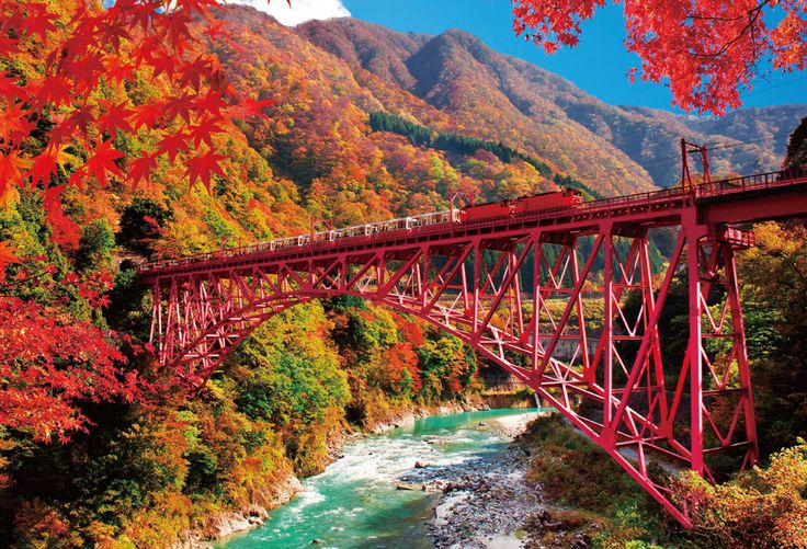 Kurobe Gorge Railway / Toyama The best time to see the maple trees is from the beginning of November to the middle of November.