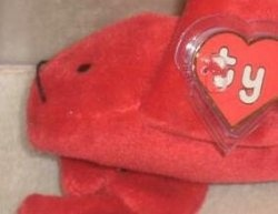 Punchers The Lobster is one of the most expensive beanie babies.  http://www.squidoo.com/most-expensive-beanie-baby