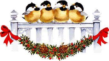 Vier Koolmeesjes op wit hek met Kersttak met strikken