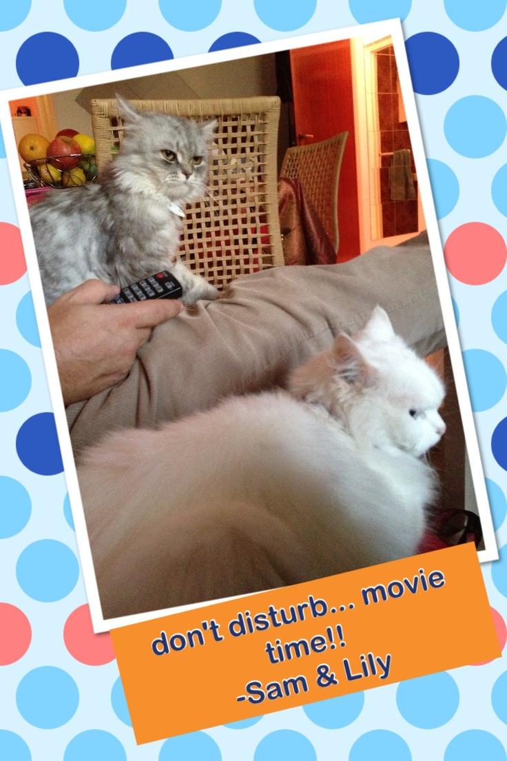 movie time!! :P