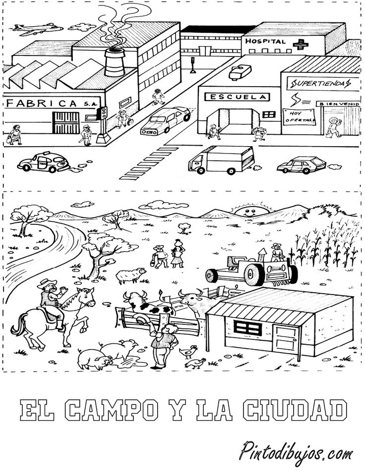 11 best Día del agricultor images on Pinterest | Farmers, Farms and ...