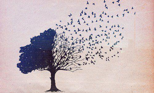 Tree turning into birds