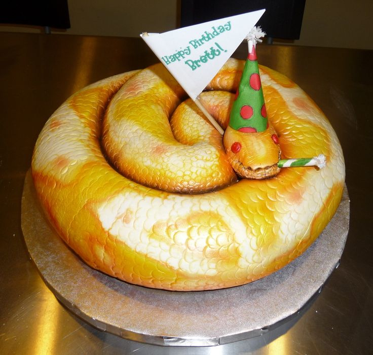 52 Best Snake Birthday Party Silly Boys 0 Images On