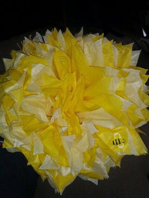 Yellow n white pom pom