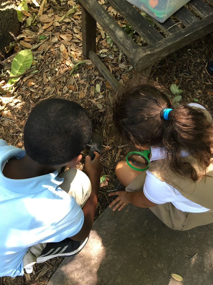 Finding worms and beetles at Fairchild Tropical Garden #Dirt Play #EAOSchool Play
