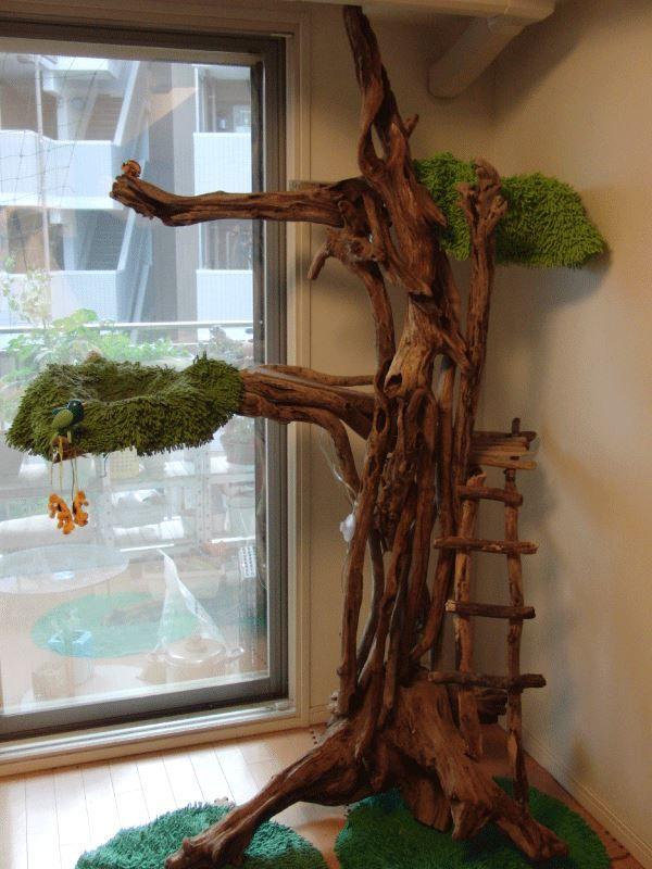 自然木 流木 木製キャットタワー|HHHのページ|ブログ|HHH|みんカラ - 車・自動車SNS(ブログ・パーツ・整備・燃費)