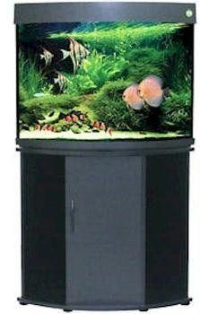 Penn Plax 36-Gallon Corner Aquarium Tank with Stand, Beech - http://www.petsupplyliquidators.com/penn-plax-36-gallon-corner-aquarium-tank-with-stand-beech/