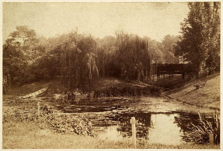 ELTE Füvészkert - A szigetre vezető kis híd 1896-ban