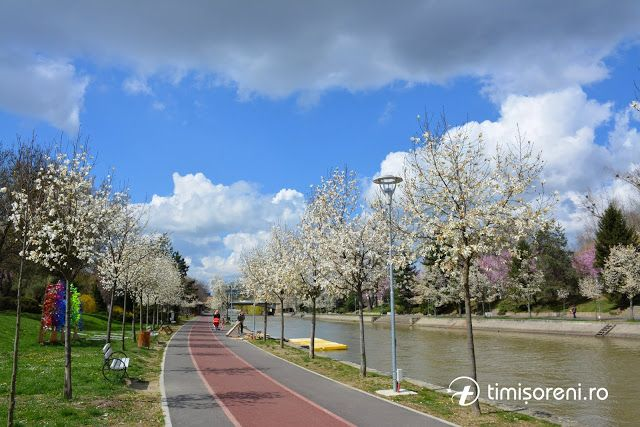 Timisoara Travel Guide: About Timisoara