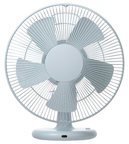 BRING A FAN ON THE CRUISE