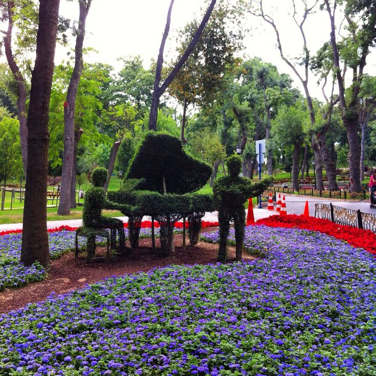 Concert to the nature...at Emirgan, İstanbul, Turkey.