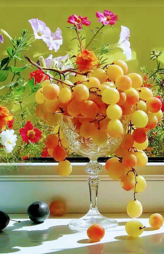 классическая французская картинки с добрым утром и хорошего настроения фрукты меня