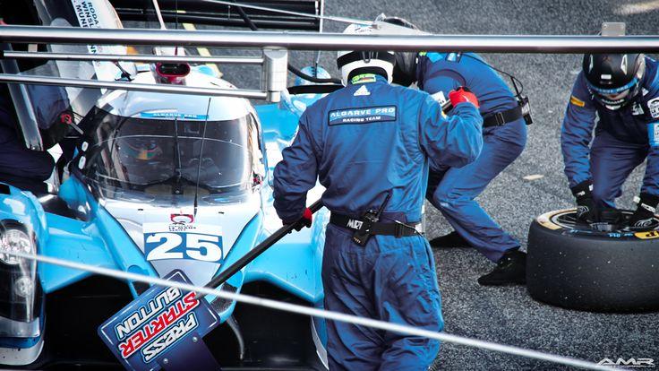 ELMS Estoril'15 // Algarve Pro Racing Team - Ligier JP P2 Nissan - LMP2 #25
