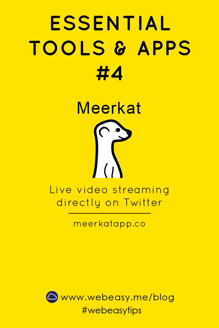 The Meerkat app is a live streaming app that posts to Twitter. It allows followers to watch real-time events as you are recording them. #meerkatapp #meerkat #livestream