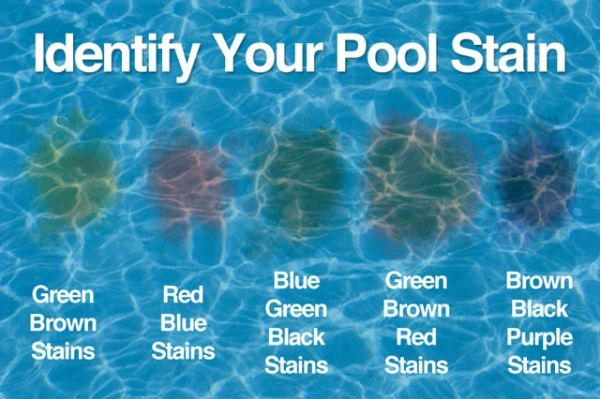 What type of pool stain do I have, and how do I get rid of it?