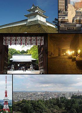 左上から: 宇都宮城、餃子像、宇都宮二荒山神社、大谷資料館、宇都宮タワー、宇都宮タワーからの眺め