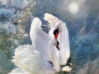 Любовь долго терпит, Она не гордится.  Любовь всему верит, не мстит и не злится.  Любовь не покинет, Любовь не изменит.  За боль не осудит, и снова поверит.  Любовь превозносит, Любовь вдохновляет.  От горечей жизни Собой закрывает.  Любовь не обидит, Она окрыляет.  И тело, и душу Любовь исцеляет.  Любовь не разрушит, Она созидает.  И только Любовь все ошибки прощает.  И мир этот создан Любовью, конечно,  И только ЛЮБОВЬ на Земле будет вечно!