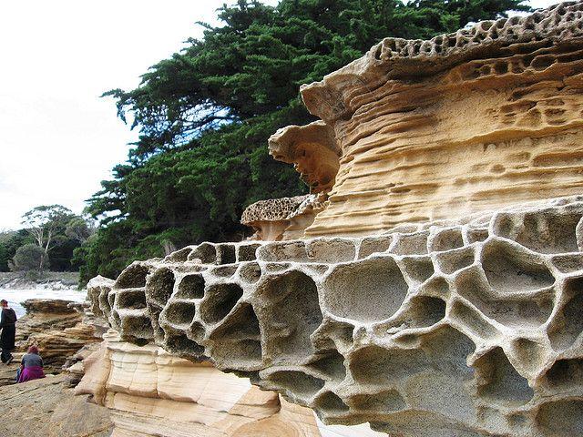 The Painted Cliffs on Maria Island, Tasmania, Australia (by clarasamazing).