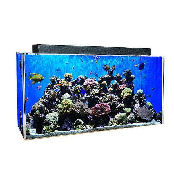 Rectangle UniQuarium 3-in-1 Fresh or Saltwater Acrylic Aquarium #11-20-Gallons #21-30-Gallons #31-40-Gallons