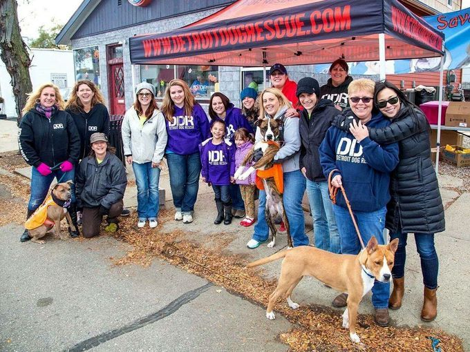 Detroit Free Press takes a photo look at the work of Detroit Dog Rescue, Detroit's first and only no-kill shelter.