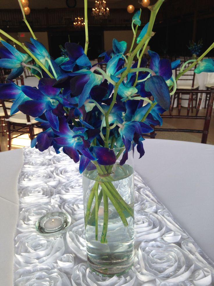 DIAMOND - stems of fresh floral cymbidium orchids