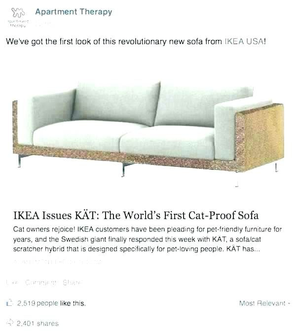 Cat Proof Couch Cool Couches