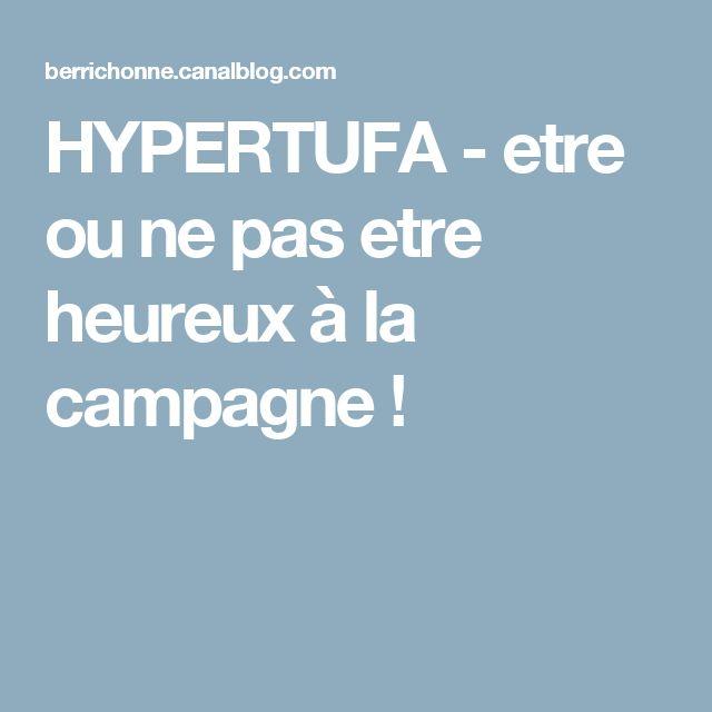 HYPERTUFA - etre ou ne pas etre heureux à la campagne !