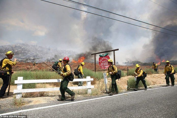 Gender Reveal Party Sparked Huge El Dorado Wildfire Which Has Burned 7050 Acres In California Gender Reveal Party Reveal Parties Gender Reveal