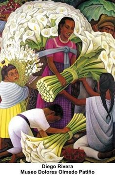 Diego Rivera Museo Dolores Olmedo Patiño