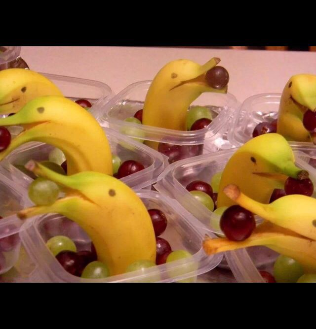 Bottle-nosed dolphin snacks. Adorable!!