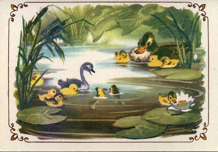 – Кряк! Кряк! – позвала она, и утята один за другим тоже бултыхнулись в воду. Сначала вода покрыла их с головой, но они сейчас же вынырнули и отлично поплыли вперед. Лапки у них так и заработали, так и заработали. Даже гадкий серый утёнок не отставал от других.
