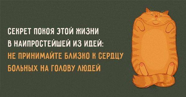 http://cs8.pikabu.ru/post_img/2016/04/10/12/146031957927964001.jpg