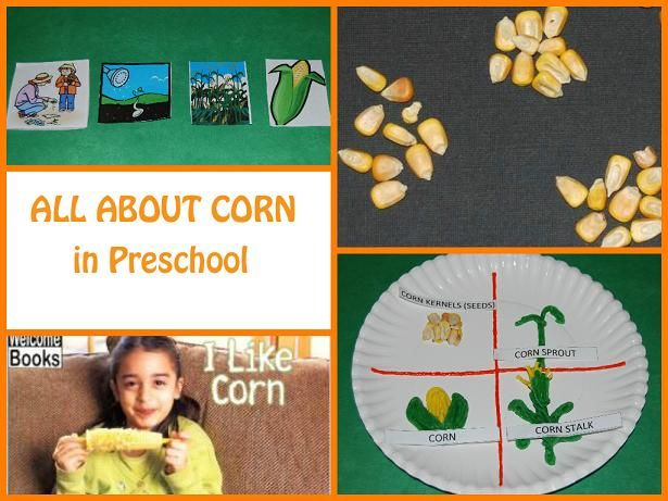 Corn Life Cycle & Sequencing Cards for #Preschool! #PlayfulPreschool - The Preschool Toolbox BlogThe Preschool Toolbox Blog