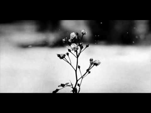 Chopin - Spring Waltz (Mariage d'Amour) - YouTube