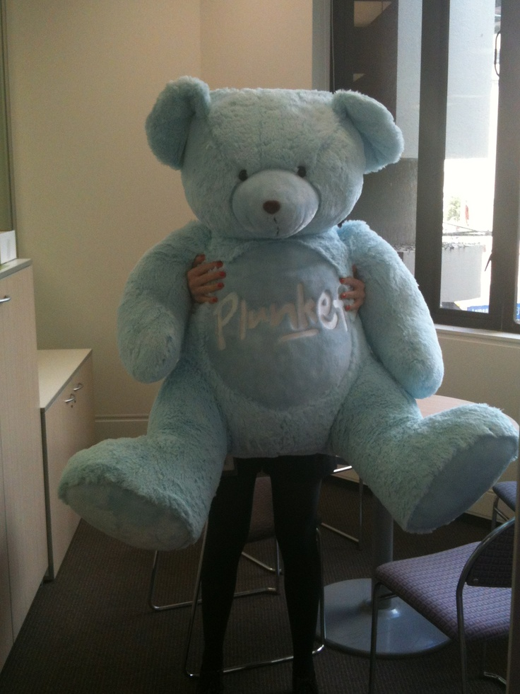 Introducing Big Bear for Appeal 2012 - He's hanging out at National Office between visits to meet some of our friends.