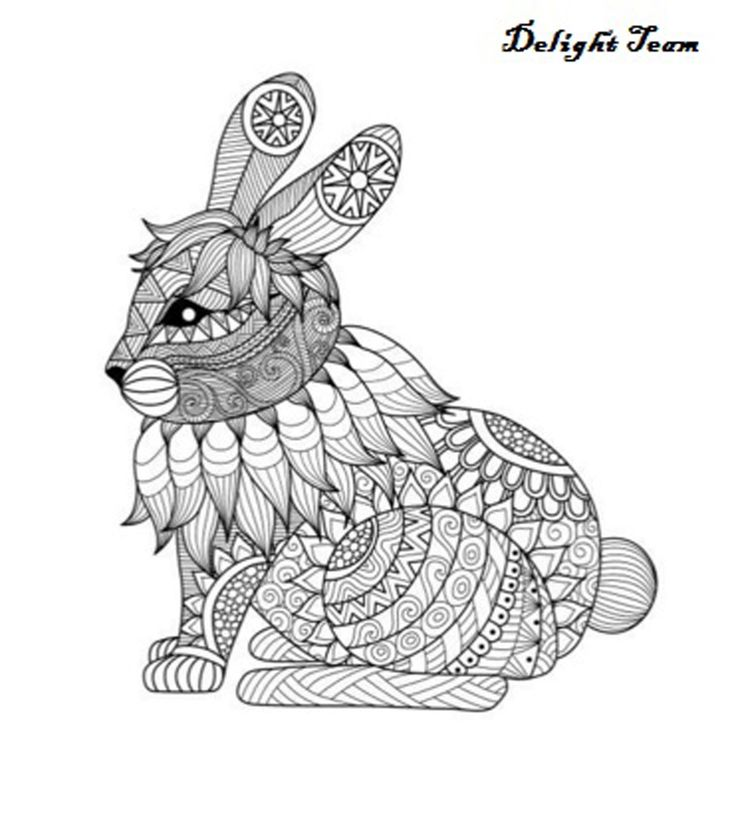 Animals Coloring Book Design For Adult Stress Relief Children 84 Page
