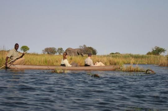 Mokoro Cruise at Pom Pom Camp (OKavango Delta, Botswana)