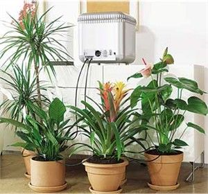 how to make an automatic water dispenser for plants