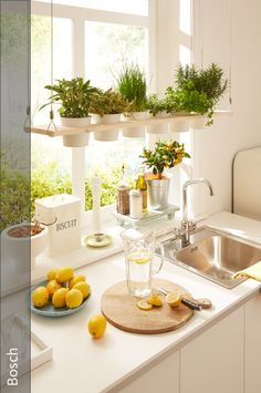 Basil, chives and Co. always at hand: …  Basil, chives and Co. always at hand: BOSCH shows you, we will build a decorative hanging shelf for your kitchen herbs in the twinkling of an eye!