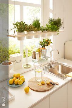 Simple DIY idea: decorative herb shelf for DIY