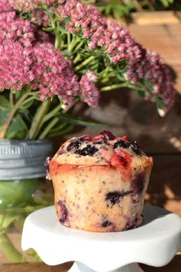 Muffins aux petits fruits et graines de chia