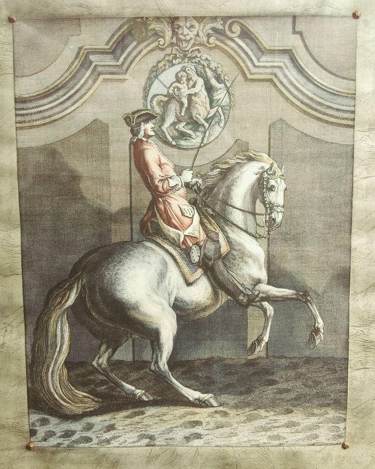 Courbette rechts print 🐴 Spanische Hofreitschule 👑 #courbette #prints #oldprint #starekojdy #classic #horse #spanischehofreitschule #jazdakonna #equistrian #hiszpanskaszkolajazdy #antiques #onlinestore #onlineshop #equine #horsesofinstagram #equestrianlife #jeździectwo
