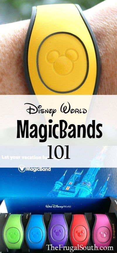 Everything you need to know about using MagicBands at Walt Disney World! Magic Bands make vacation so much easier.